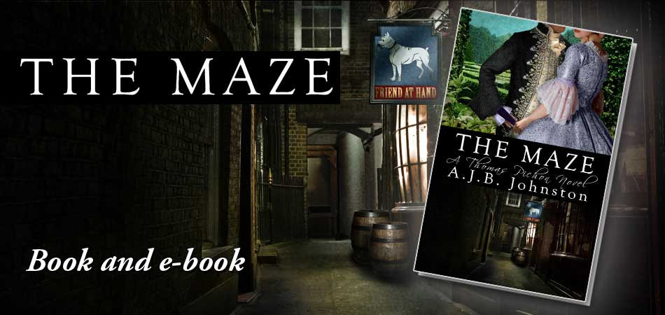 The Maze - Book & eBook