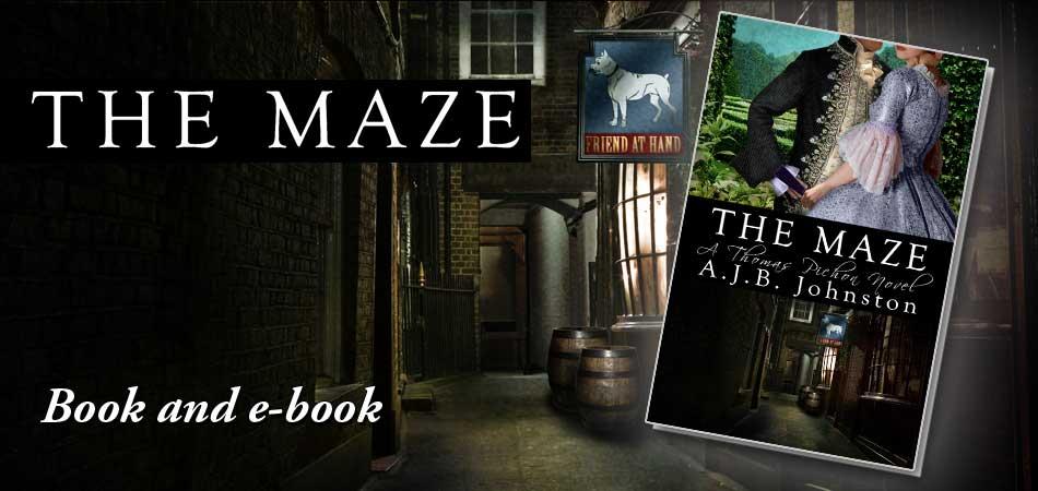 The Maze - Book & eBook